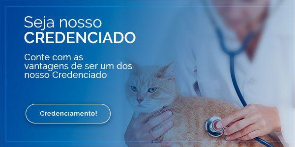 banner-pequenos-credenciamento-dottordog